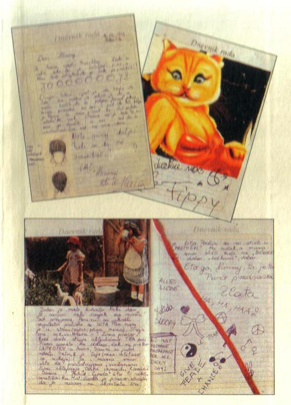 zlatas diary Zlata's diary a child's life in sarajevo is an autobiography written by zlata filipovic about her childhood life during the war, the bosnian war zlata writes in her diary about all of the horrible things happening around her.